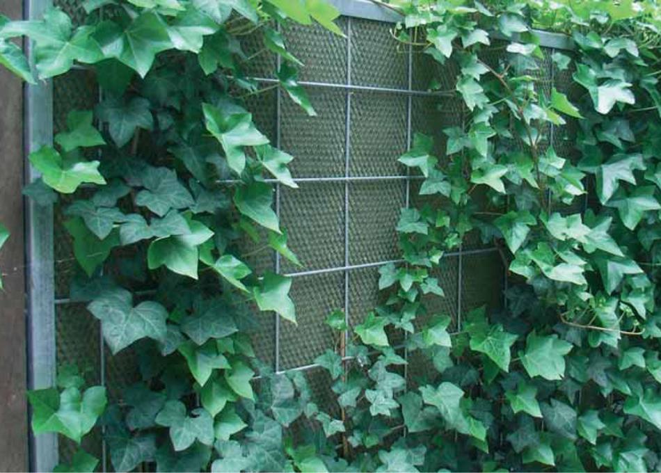 Tanca acústica Noistop Green