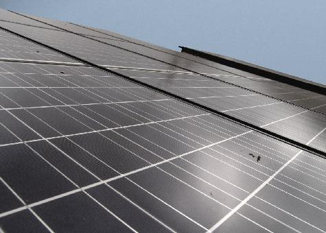 Placa fotovoltaica Poly 230