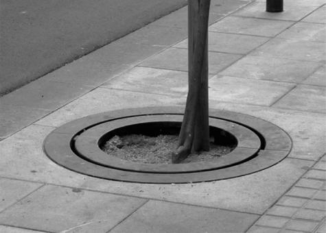 Escossell Caramel circular